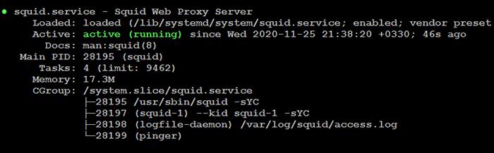 Squid Service Status