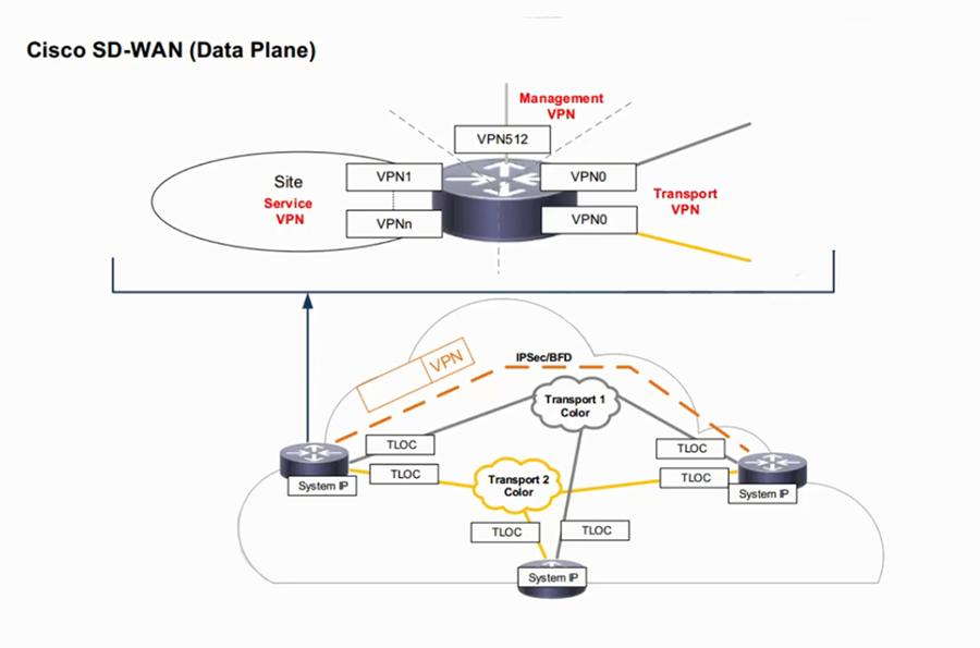 SD-WAN Data plane